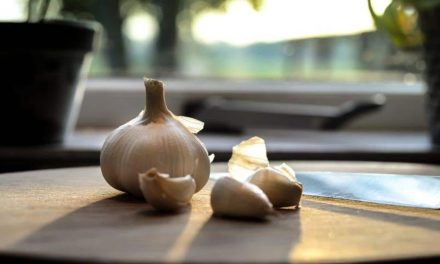Researchers studying whether garlic essential oil could prevent COVID-19 infection